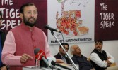 Tamil Nadu regime only wants benefit to Power Thieves: Javadekar