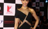 People had apprehensions: Deepika on trilogy with Bhansali